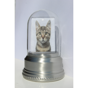 Iris Keepsake Pewter Small Photo Pet Cremation Urn 302