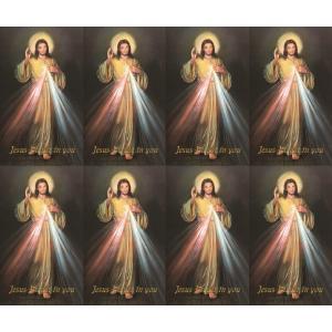 Divine Mercy- 8 UP