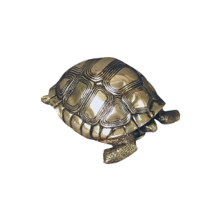 Turtle - Lost Wax Bronze