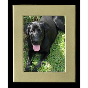 Cremation Photo Frame, Large Gold Rectangle